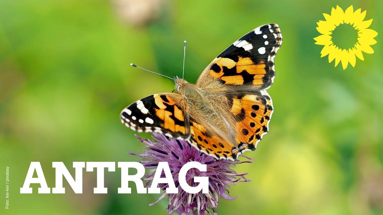 Antrag: Biodiversitätsstrategie für den Kreis Kleve